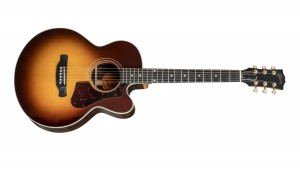 Gibson Parlor Rosewood AG 2018 Rosewood Burst