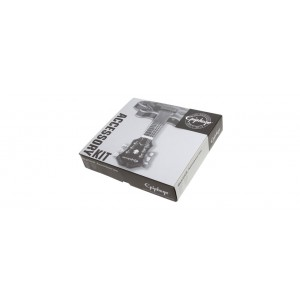 Epiphone Accessory Kit